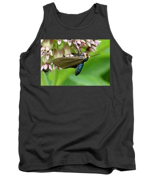 Virginia Ctenucha Moth Tank Top