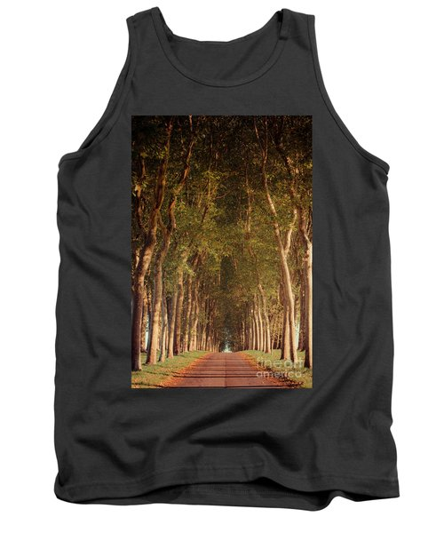 Warm French Tree Lined Country Lane Tank Top