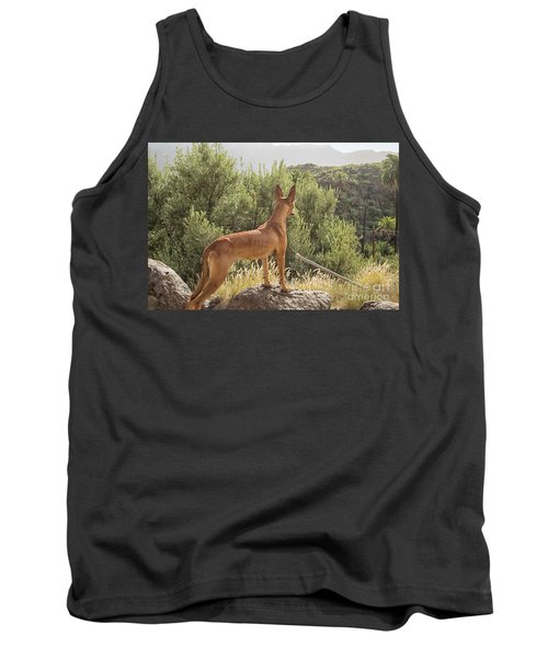 Watchful Dog Tank Top