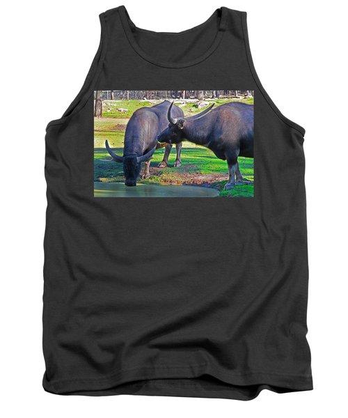 Watching 2 Water Buffalos 1 Water Buffalo Watching Me Tank Top