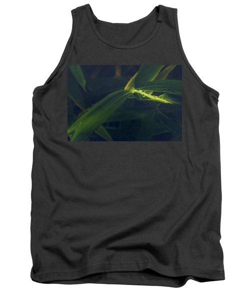 Water Catcher Tank Top