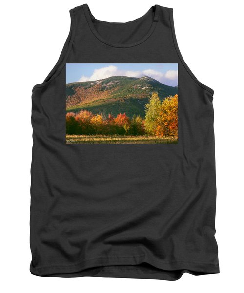 Welch And Dickey Mountains Tank Top by Nancy Griswold