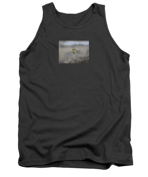 Western Meadowlark Tank Top