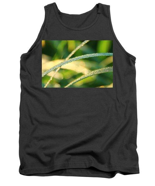 Wet Grass Tank Top