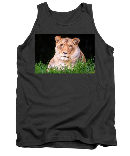 Tank Top featuring the photograph White Lion by Alexey Stiop