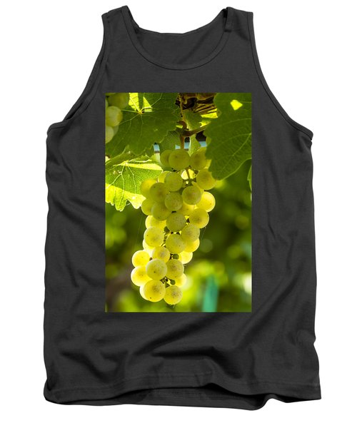 White Wine Grapes Lit By The Sun Tank Top