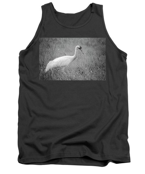 Whooping Crane 2017-4 Tank Top by Thomas Young