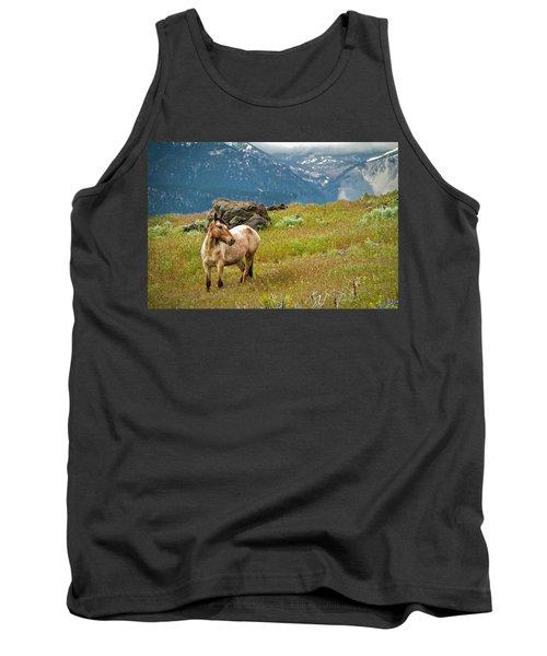 Wild Appaloosa Horse Tank Top