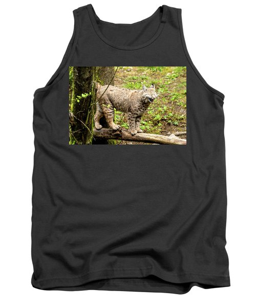Wild Bobcat In Mountain Setting Tank Top by Teri Virbickis