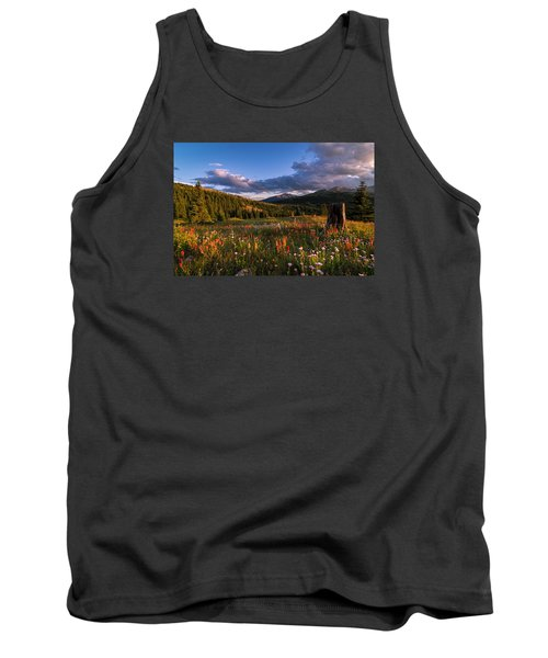 Wildflowers In The Evening Sun Tank Top by Michael J Bauer
