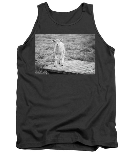 Williamsburg Lamb Tank Top