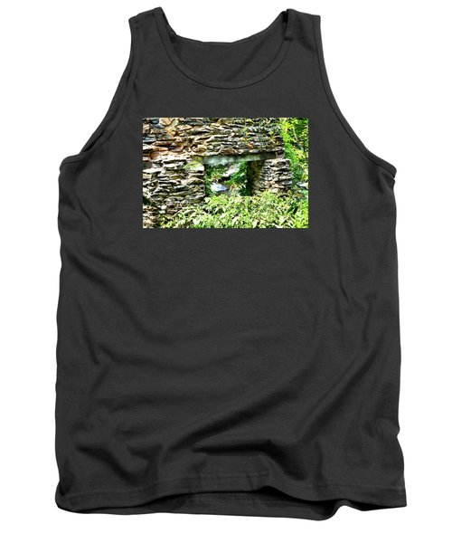 Window View Of Sope Creek Tank Top by James Potts