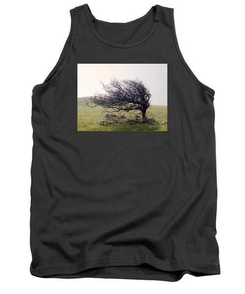 Windswept Tree Tank Top
