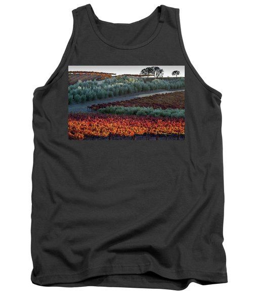 Wine Grapes And Olive Trees Tank Top by Roger Mullenhour