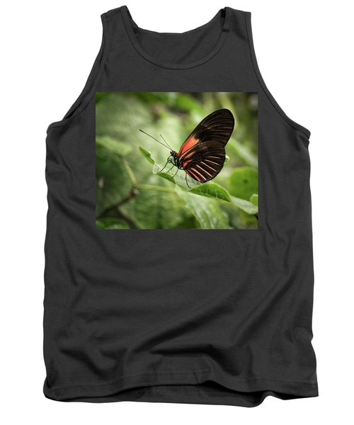 Wings Of The Tropics Butterfly Tank Top