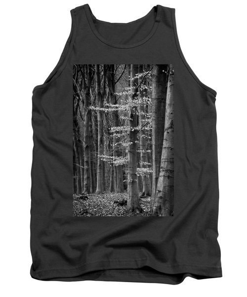 Winter Beech Tank Top by Inge Riis McDonald