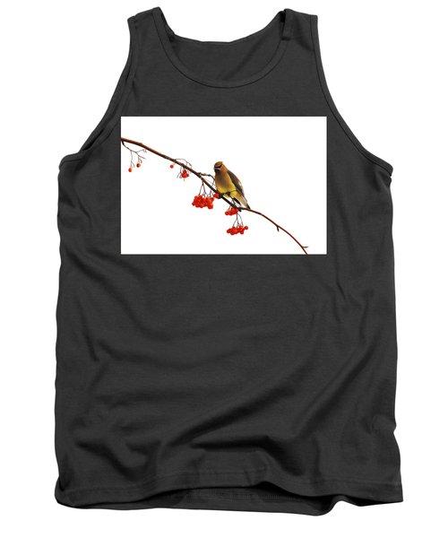 Winter Birds - Waxwing  Tank Top