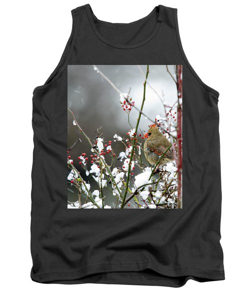 Winter Cardinal Tank Top by Gary Wightman