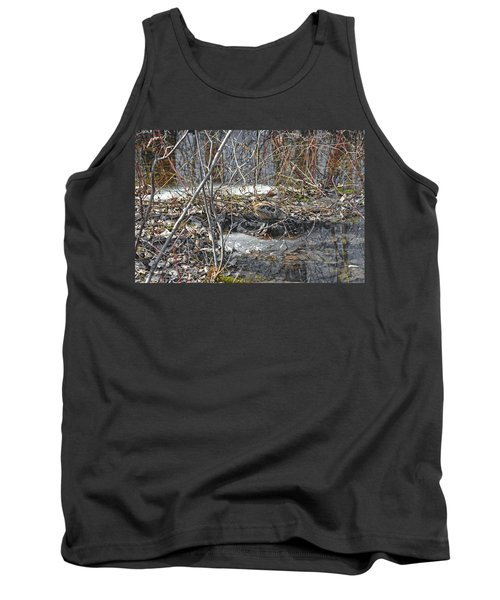 Woodcock's View Of The Forest Tank Top