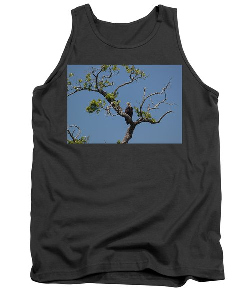 Yawkey Wildlife Reguge - American Bald Eagle Tank Top by Suzanne Gaff