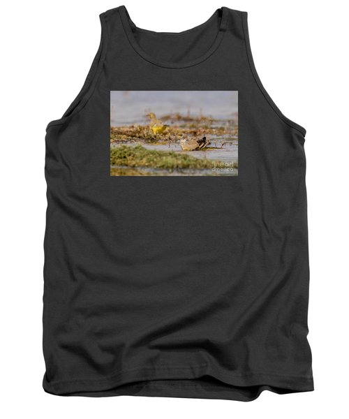 Tank Top featuring the photograph Yellow Crowned Wagtail Juvenile Bath Time by Jivko Nakev