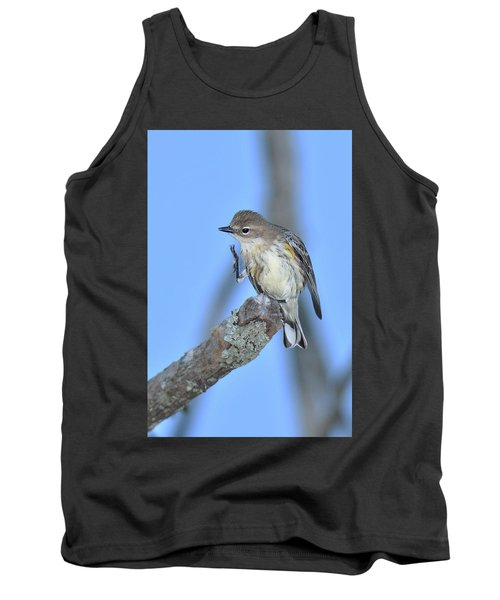 Yellow-rumped Warbler Itch Tank Top by Alan Lenk