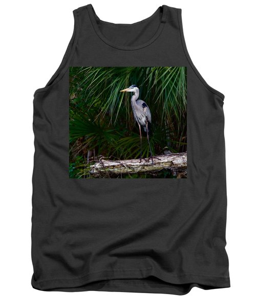 Young Great Blue Heron Tank Top