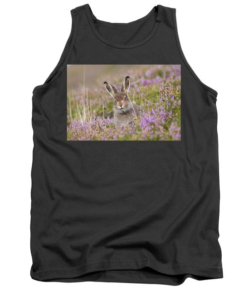 Young Mountain Hare In Purple Heather Tank Top