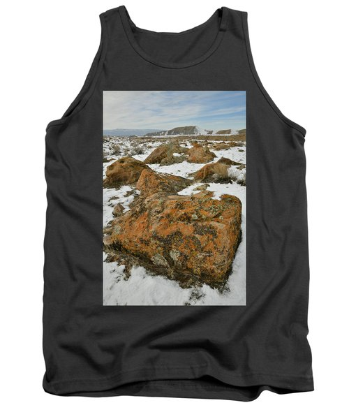 The Many Colors Of The Book Cliffs Tank Top