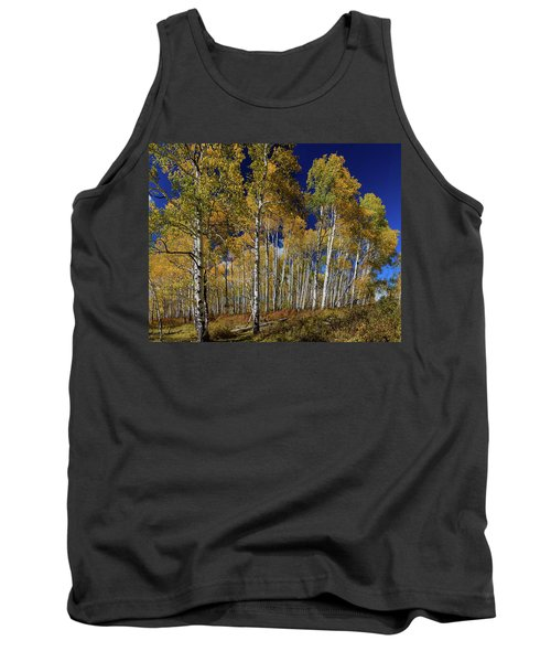 Tank Top featuring the photograph Autumn Blue Skies by James BO Insogna