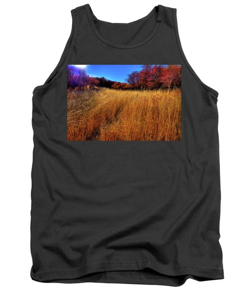 Tank Top featuring the photograph Autumn Path by David Patterson