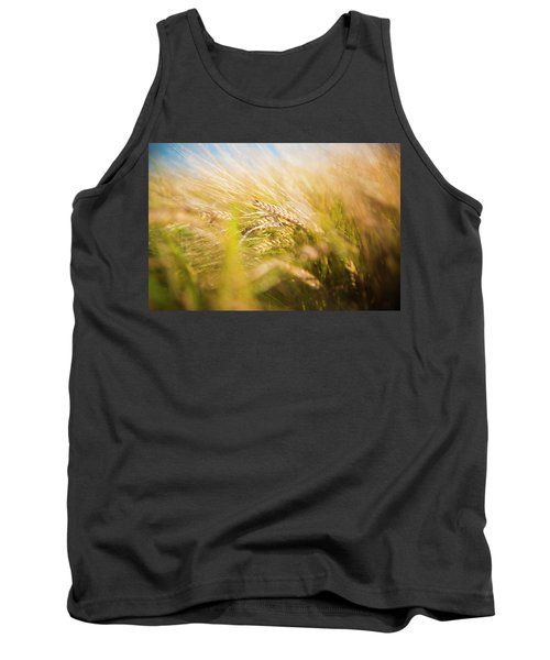 Background Of Ears Of Wheat In A Sunny Field. Tank Top
