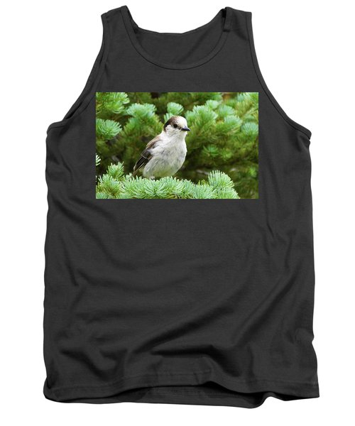 Camprobber - The Gray Jay Tank Top