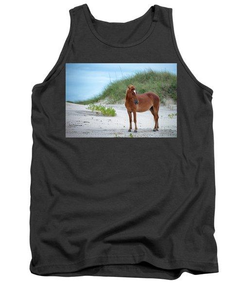 Carova Wild Horses - Colonial Spanish Mustangs Tank Top