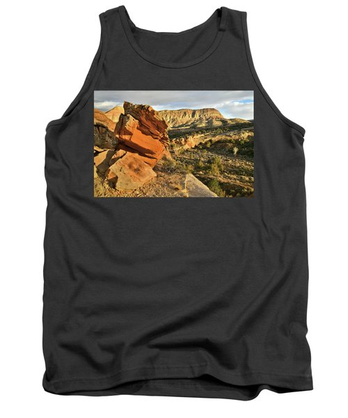 Cliffside Rock Cropping In Colorado National Monument Tank Top