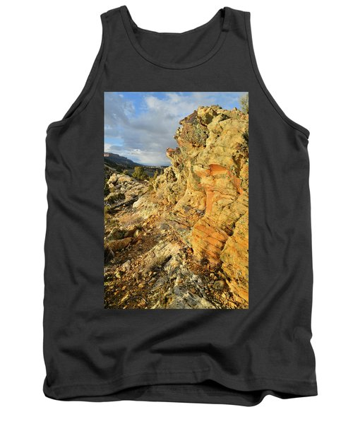 Colorful Entrance To Colorado National Monument Tank Top