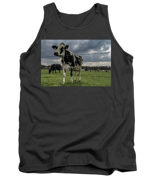 Tank Top featuring the photograph Cows Landscape. by Anjo Ten Kate