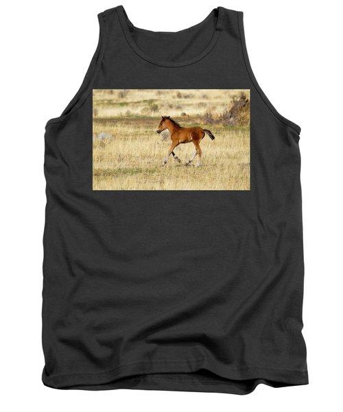 Cute Wild Bay Foal Galloping Across A Field Tank Top