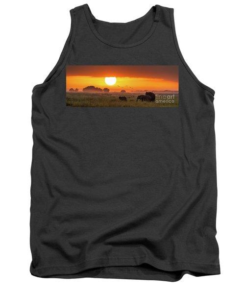 Elephants At Sunrise In Amboseli, Horizonal Banner Tank Top