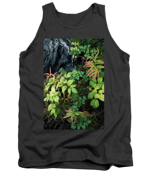 Forest Floor In Early Autumn Tank Top