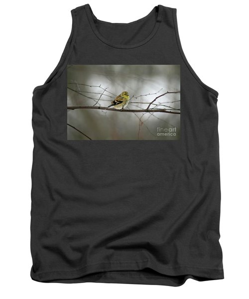 Goldfinch In Winter Looking At You Tank Top