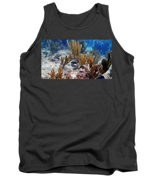 Gorgonian Parrotfish Tank Top