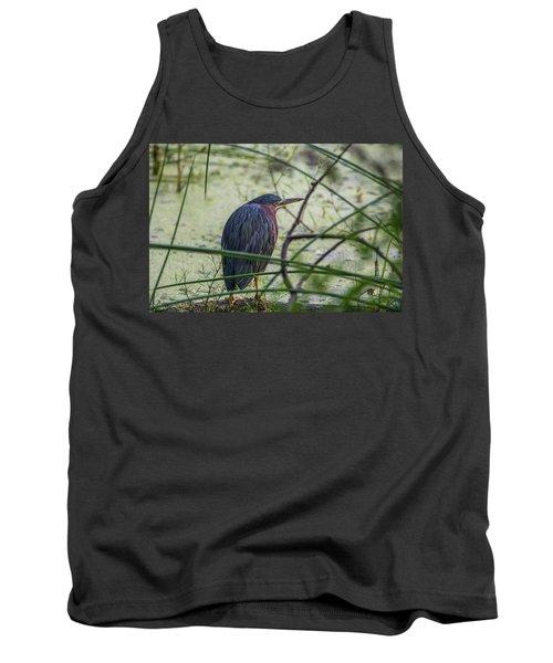 Green Heron Tank Top