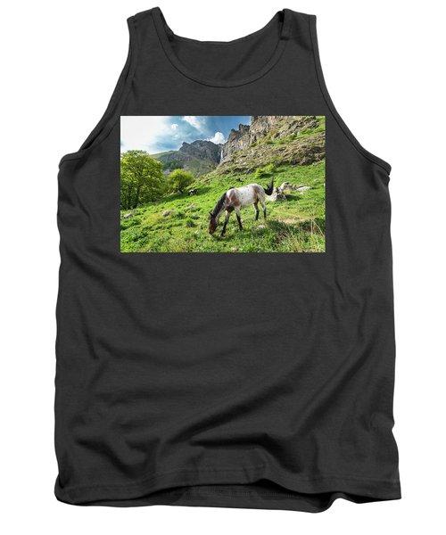 Horse On Balkan Mountain Tank Top