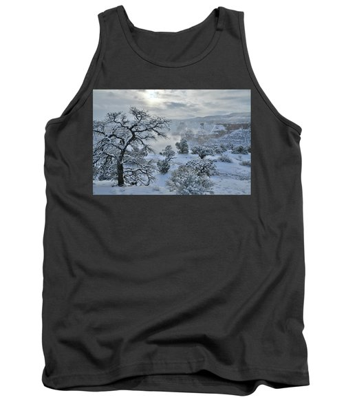Independence Canyon At Sunrise In Colorado National Monument Tank Top
