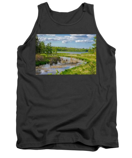 Lake Itasca Beauty Tank Top