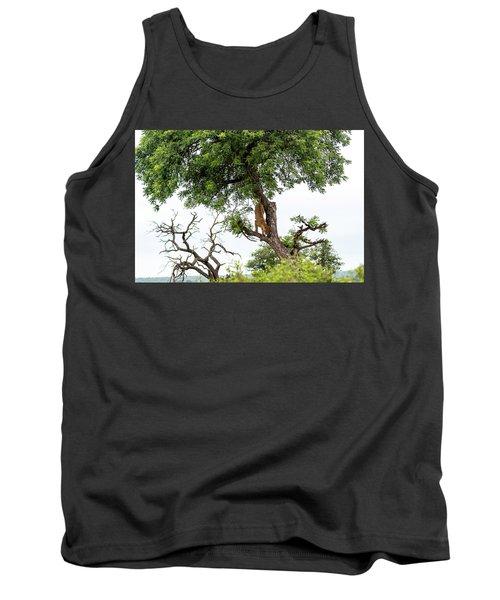 Leopard Descending A Tree Tank Top