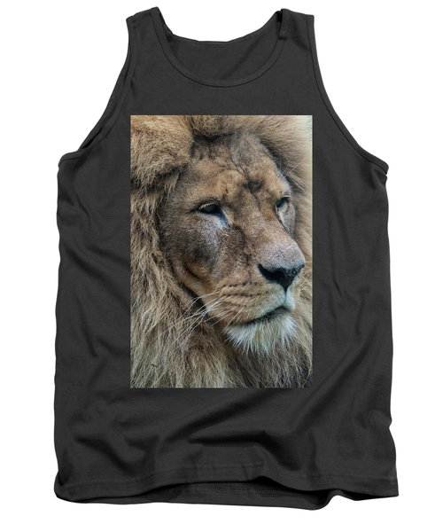 Tank Top featuring the photograph Lion by Anjo Ten Kate
