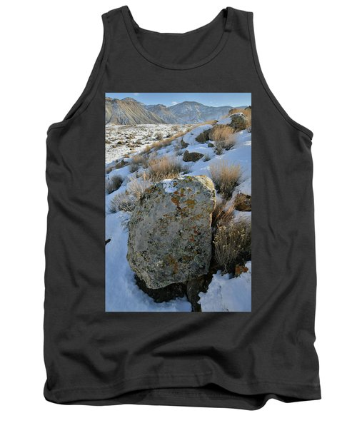 Morning At The Book Cliffs Tank Top