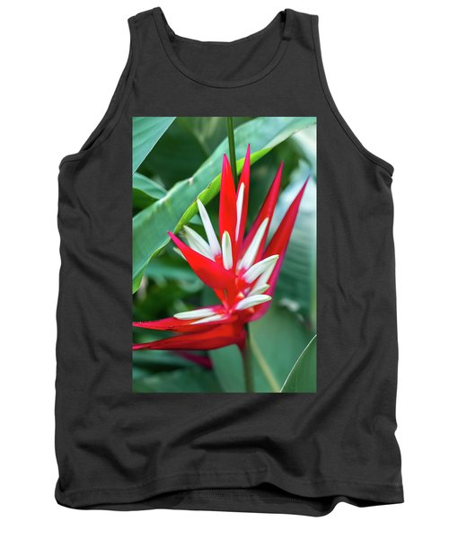 Red And White Birds Of Paradise Tank Top